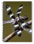 Dragonfly Twelve Spot Skimmer Spiral Notebook