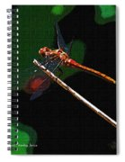 Dragonfly Waits Spiral Notebook