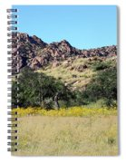 Dragoon Mountains Spiral Notebook