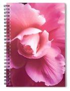 Dramatic Pink Begonia Floral Spiral Notebook