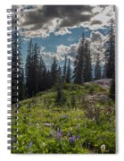 Dramatic Rainier Flower Meadows Spiral Notebook