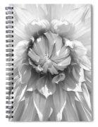Dramatic White Dahlia Flower Monochrome Spiral Notebook