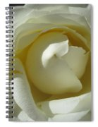 Dramatic White Rose 2 Spiral Notebook
