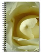 Dramatic White Rose 3 Spiral Notebook