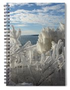 Draped In Icy Beauty Spiral Notebook