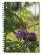 Draped In Spangled Glory Spiral Notebook