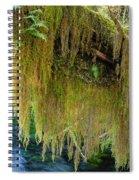 Draperies  Spiral Notebook