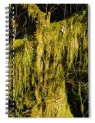 Draperies 2 Spiral Notebook