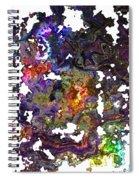Dream Fragments Spiral Notebook