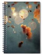 Dream Mascleta Valencia Spiral Notebook