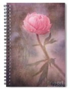 Dream-struck Spiral Notebook
