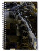 Dream Weaving Spiral Notebook