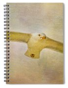 Dream World Seagull Spiral Notebook