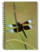 Dreaming Dragonfly Spiral Notebook