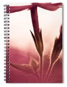 Dreaming In A Setting Sun Spiral Notebook