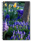 Dreaming Of Spring Spiral Notebook
