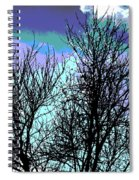 Dreaming Of Spring Through Icy Trees Spiral Notebook