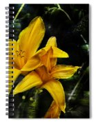 Dreams Of A Day Lily Spiral Notebook