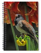 Dreams Of Autumn Spiral Notebook