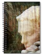 Of Lucid Dreams / Dreamscape 2 Spiral Notebook