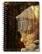 Of Lucid Dreams / Dreamscape 3 Spiral Notebook