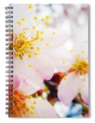 Dreamy Blossom Spiral Notebook