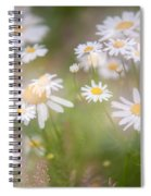 Dreamy Daisies On Summer Meadow Spiral Notebook