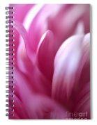 Dreamy Spiral Notebook