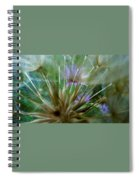 Dreamy Fairy Wishes  Spiral Notebook