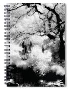 Dreamy Gardens - 1007 Spiral Notebook