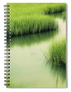 Dreamy Marshland Spiral Notebook