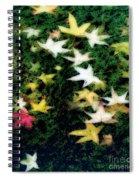 Dreamy Pond Spiral Notebook