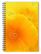 Dreamy Poppies Spiral Notebook