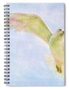 Dreamy Soft Seagull Spiral Notebook