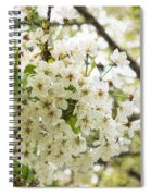 Dreamy White Cherry Blossoms - Impressions Of Spring Spiral Notebook