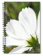 Dreamy White Cosmos Spiral Notebook