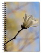 Dreamy Wild Magnolia In The Forest Spiral Notebook