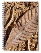 Dried Leaf Spiral Notebook