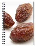 Dried Medjool Dates Spiral Notebook