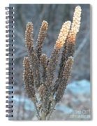 Dried Plant Spiral Notebook