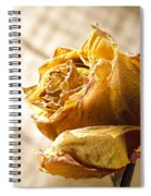 Dried Yellow Rose Spiral Notebook