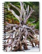 Drifted Away Spiral Notebook