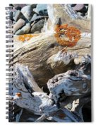 Driftwood Abstract Spiral Notebook