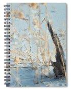 Driftwood Abstract Spiral Notebook