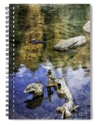 Driftwood And Reflections Spiral Notebook