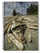Driftwood And Sea Stacks On Ruby Beach Spiral Notebook