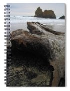 Driftwood At Cannon Beach Oregon Spiral Notebook