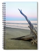 Driftwood At Dusk Spiral Notebook