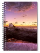 Driftwood Spiral Notebook
