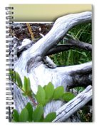 Driftwood Escape Spiral Notebook